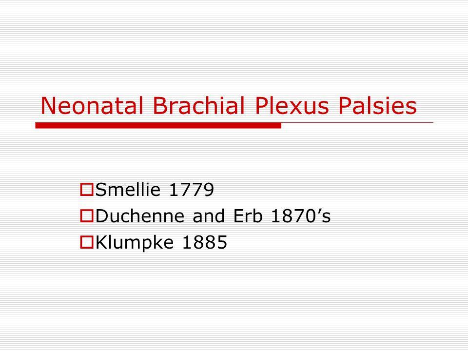 Neonatal Brachial Plexus Palsies