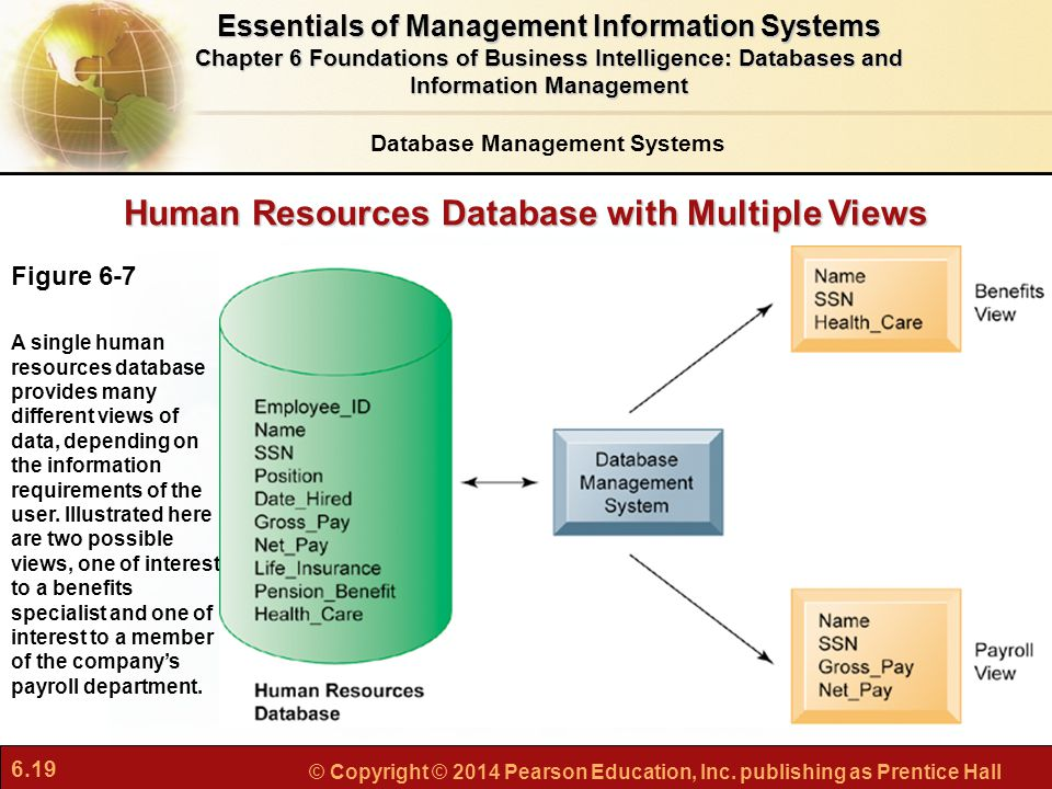 Human Resources Database with Multiple Views