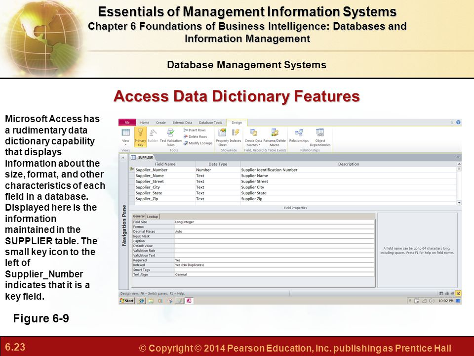 Access Data Dictionary Features