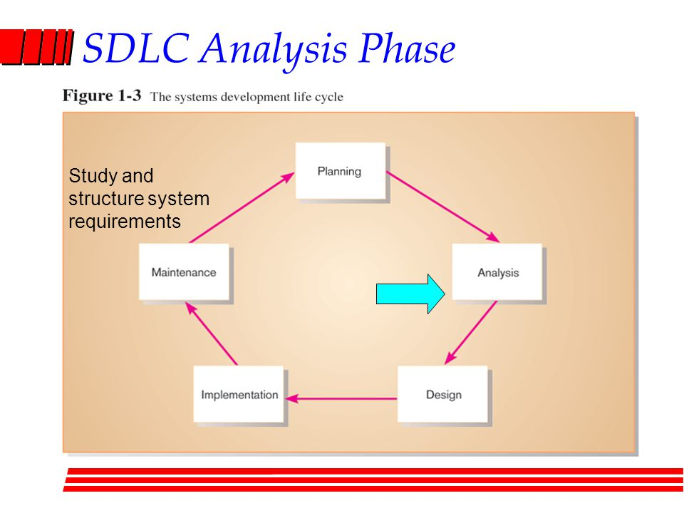 SDLC Analysis Phase Study and structure system requirements