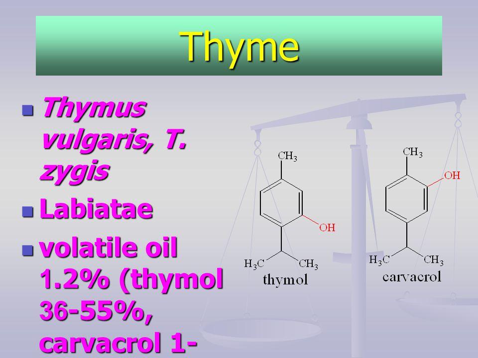 Thyme Thymus vulgaris, T. zygis Labiatae