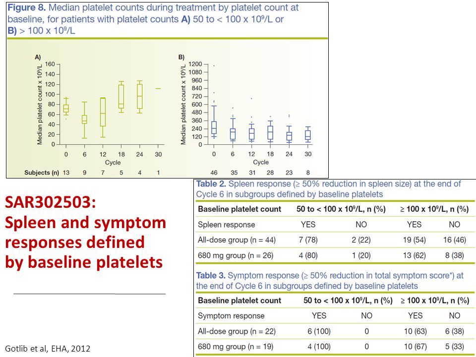 SAR302503: Spleen and symptom responses defined by baseline platelets