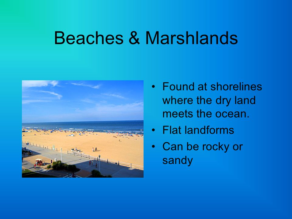 Beaches & Marshlands Found at shorelines where the dry land meets the ocean.