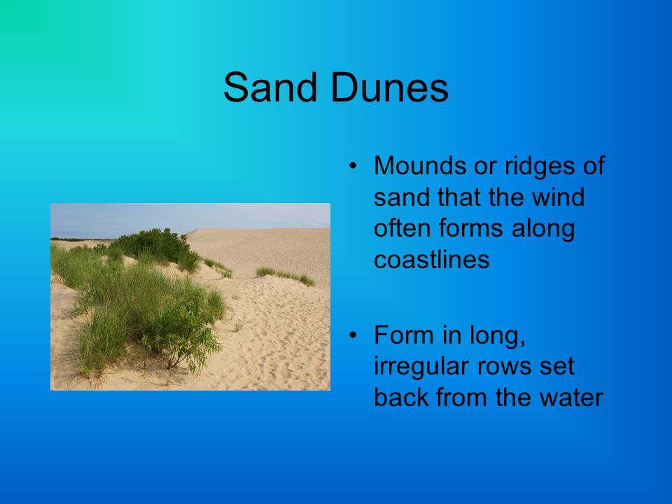 Sand Dunes Mounds or ridges of sand that the wind often forms along coastlines.