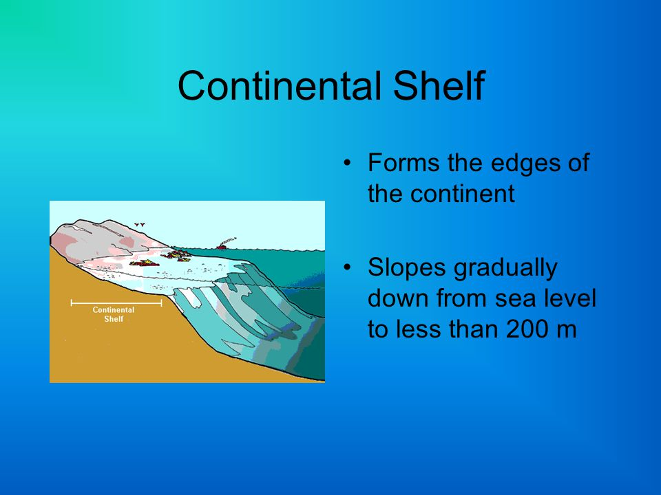 Continental Shelf Forms the edges of the continent
