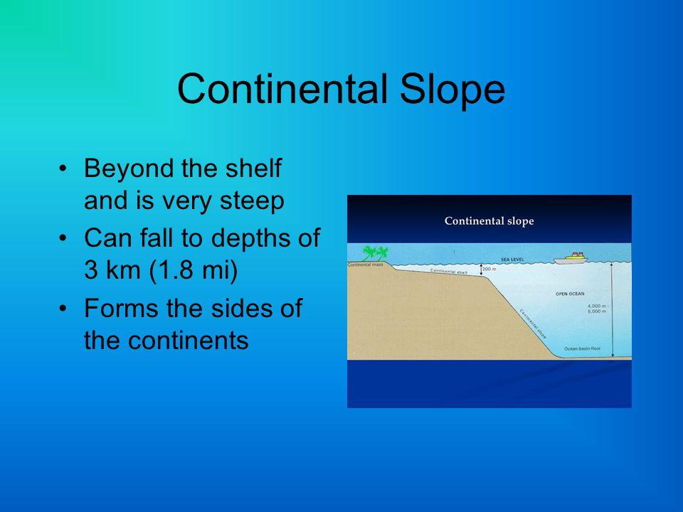 Continental Slope Beyond the shelf and is very steep