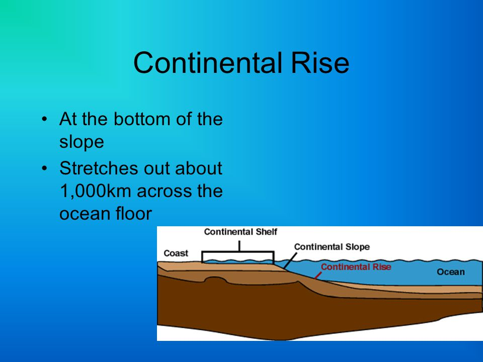 Continental Rise At the bottom of the slope