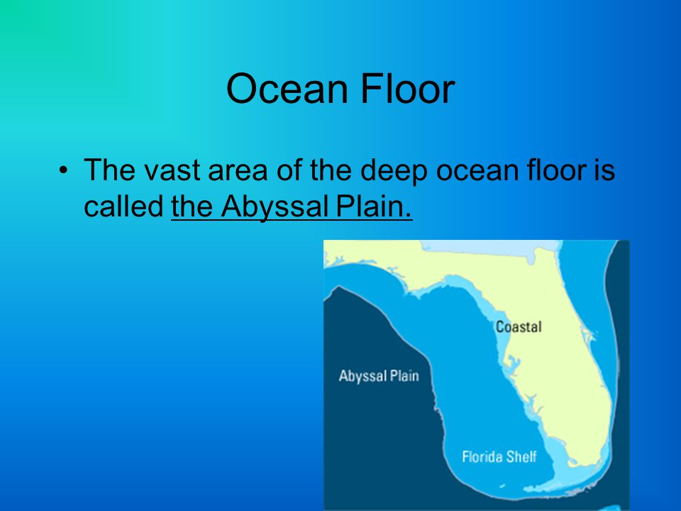 Unit c chapter 6 lesson 1 c6 c11 ppt video online download for Define abyssal plain