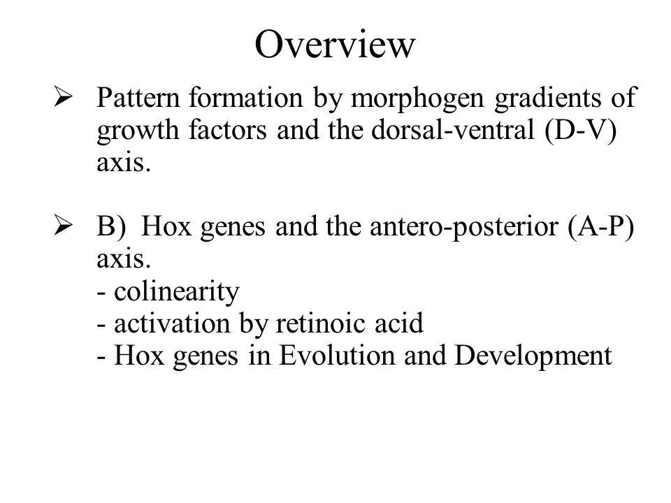 Overview Pattern formation by morphogen gradients of growth factors and the dorsal-ventral (D-V) axis.