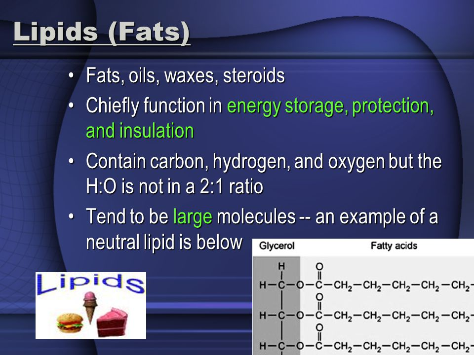 Lipids (Fats) Fats, oils, waxes, steroids