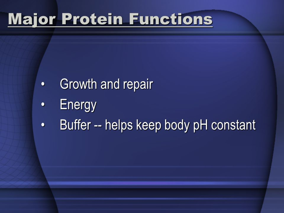 Major Protein Functions