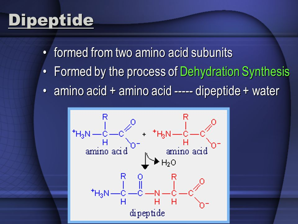 Dipeptide formed from two amino acid subunits