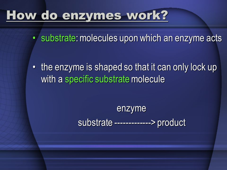 How do enzymes work substrate: molecules upon which an enzyme acts