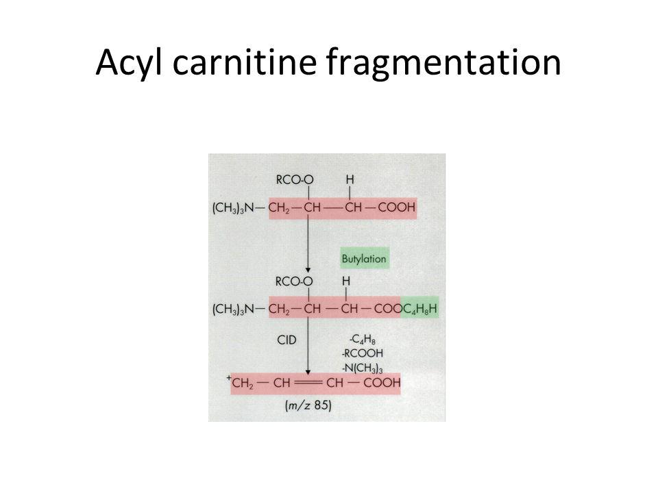 Acyl carnitine fragmentation