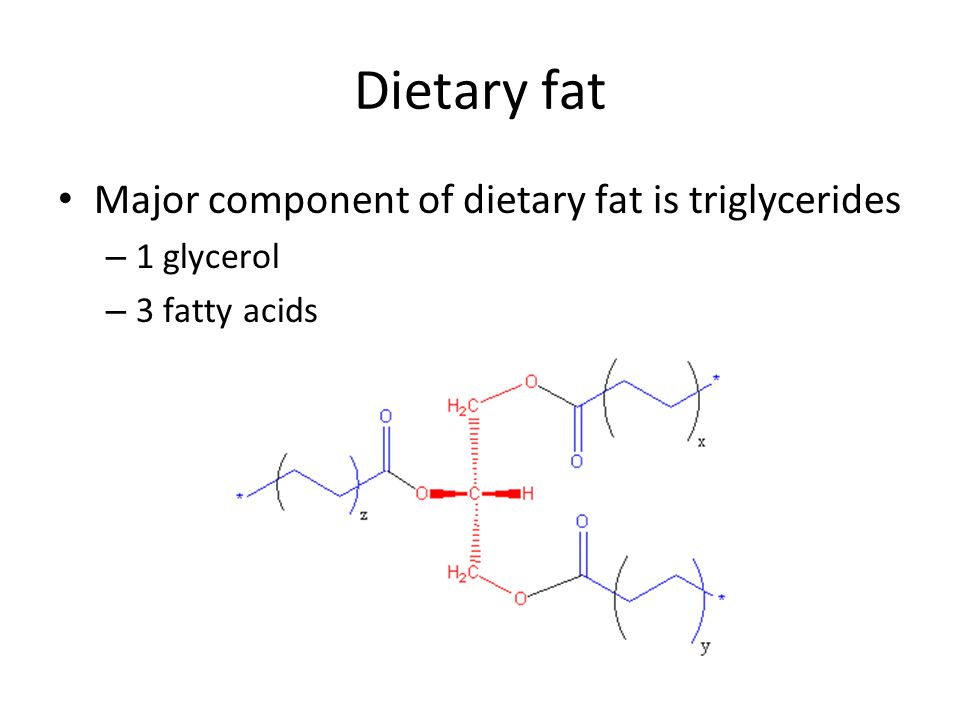 Dietary fat Major component of dietary fat is triglycerides 1 glycerol