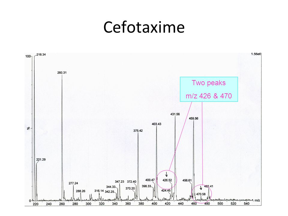 Cefotaxime Two peaks m/z 426 & 470