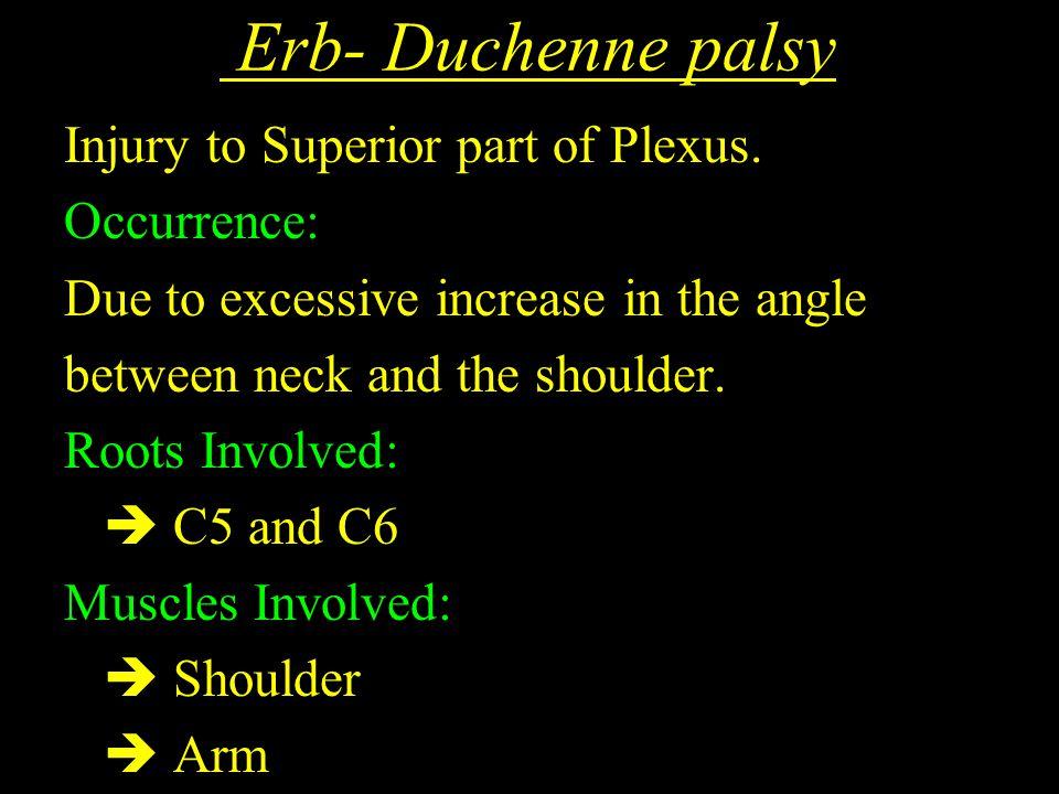 Erb- Duchenne palsy