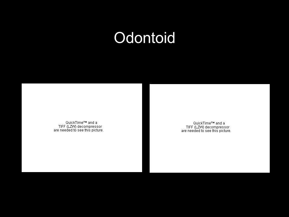 Odontoid