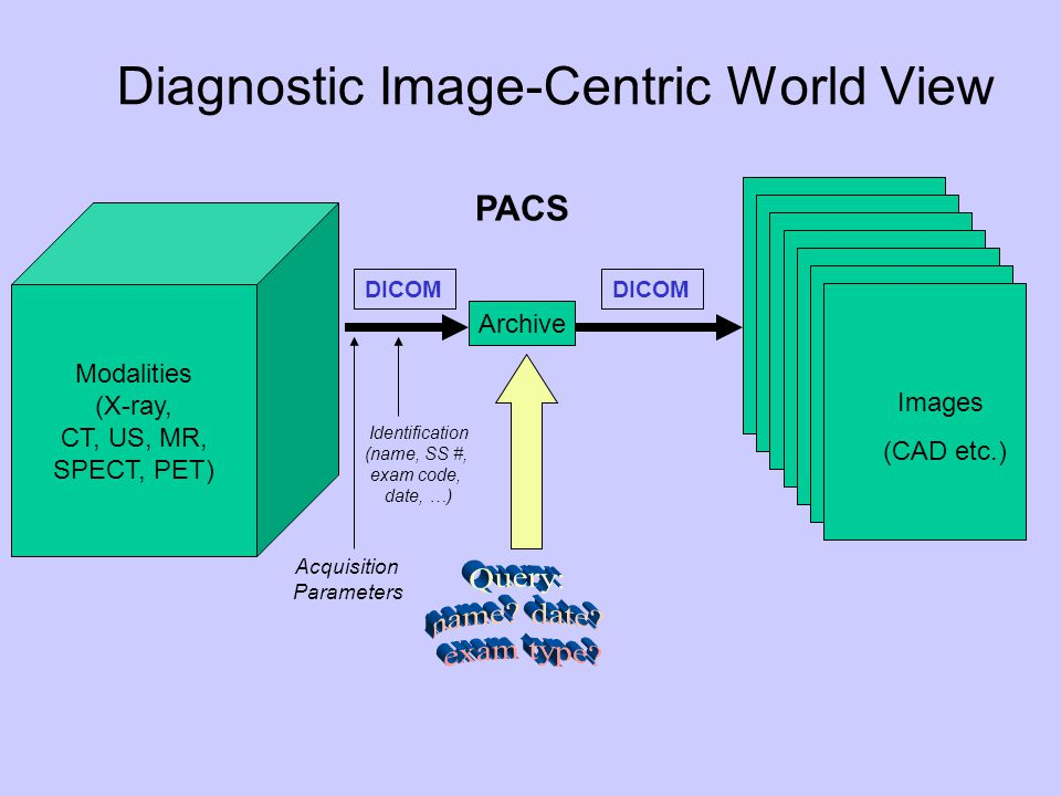 Diagnostic Image-Centric World View