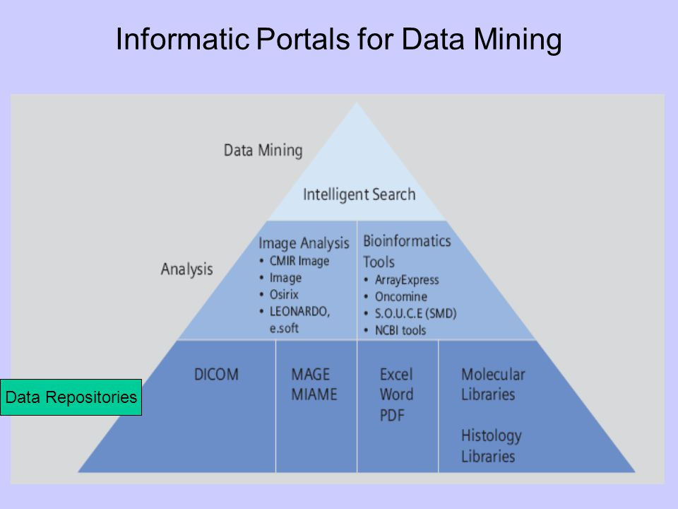 Informatic Portals for Data Mining