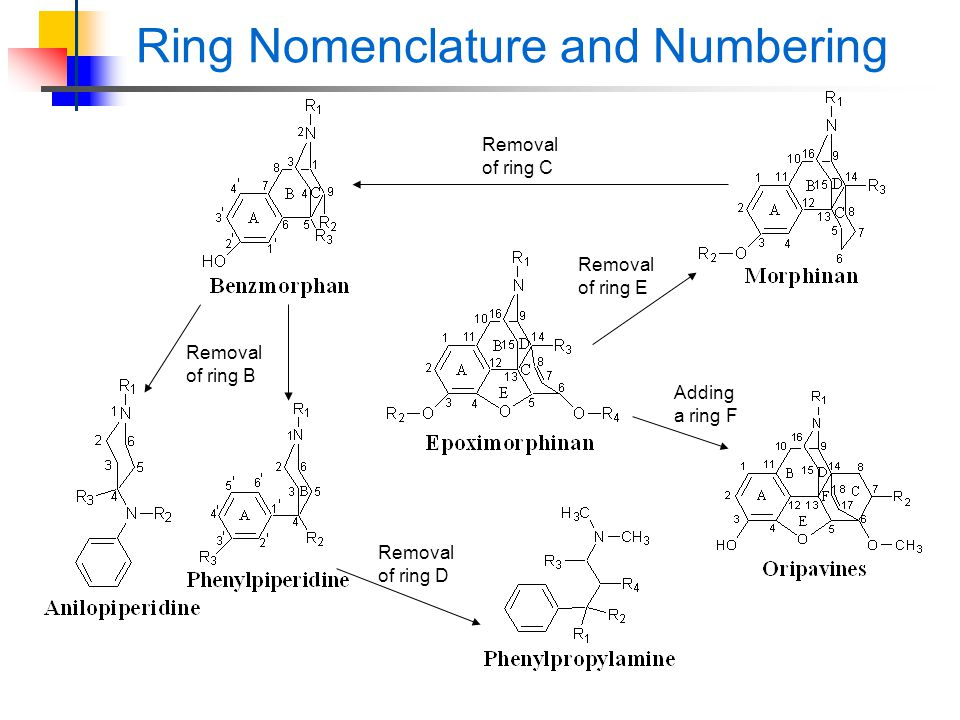 Ring Nomenclature and Numbering