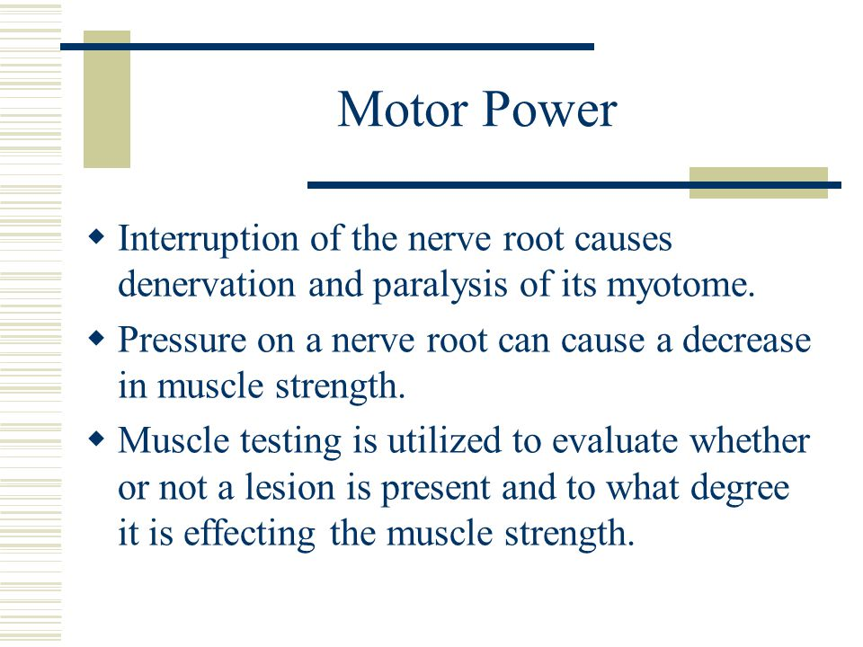 Motor Power Interruption of the nerve root causes denervation and paralysis of its myotome.