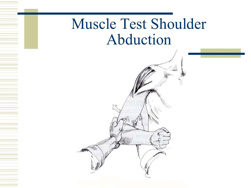 Muscle Test Shoulder Abduction