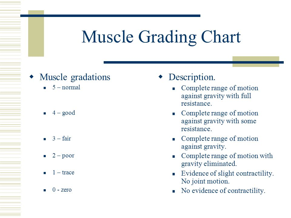 Muscle Grading Chart Muscle gradations Description.