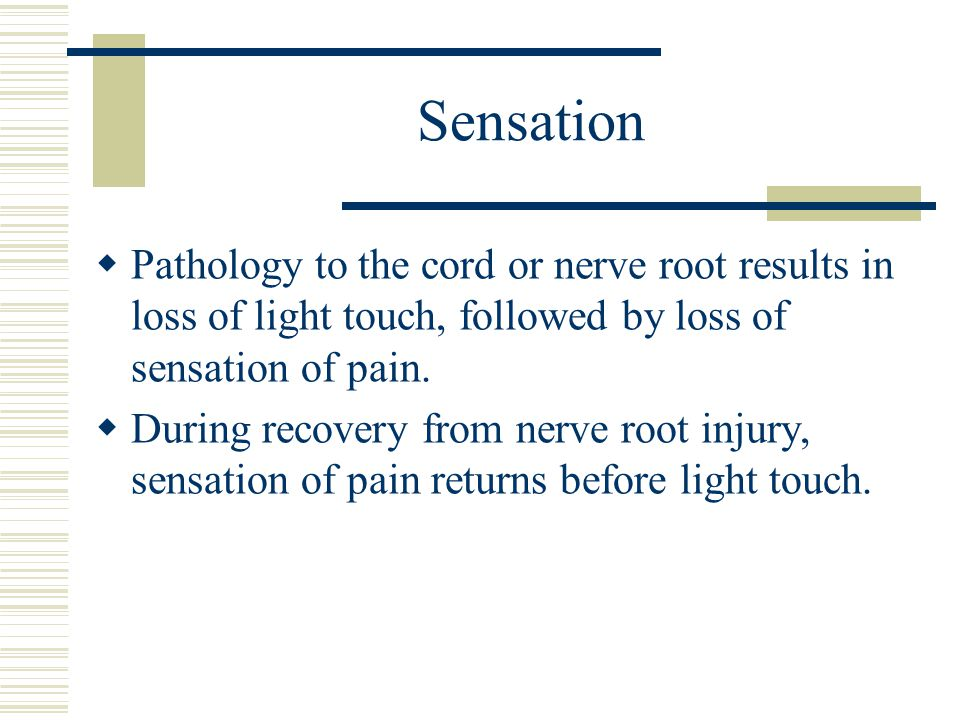 Sensation Pathology to the cord or nerve root results in loss of light touch, followed by loss of sensation of pain.