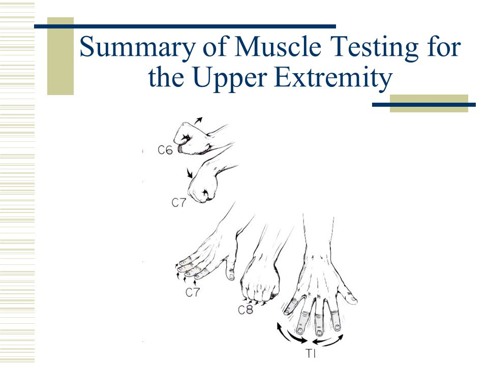 Summary of Muscle Testing for the Upper Extremity