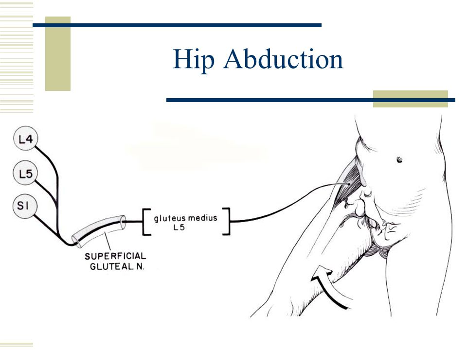 Hip Abduction