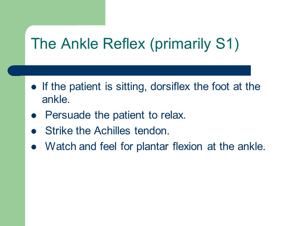 The Ankle Reflex (primarily S1)