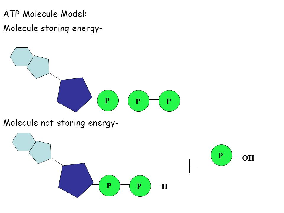 Molecule storing energy-