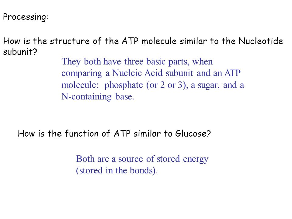 Both are a source of stored energy (stored in the bonds).