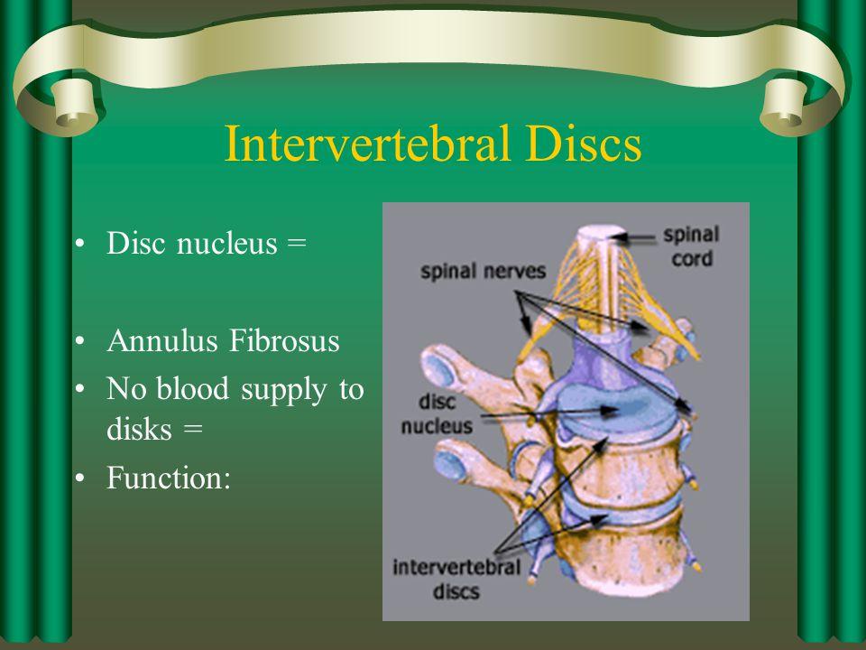 Intervertebral Discs Disc nucleus = Annulus Fibrosus