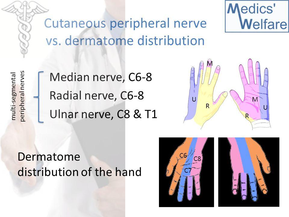 Dermatomes Hand Hand Dermatomes Relate...