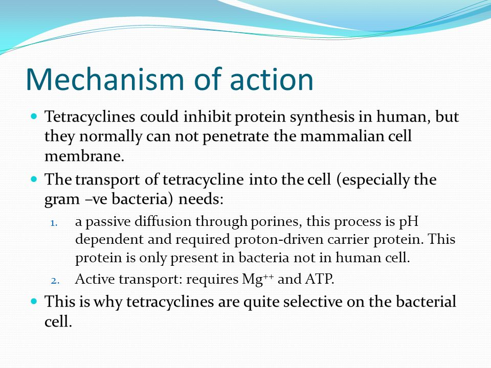Mechanism of action Tetracyclines could inhibit protein synthesis in human, but they normally can not penetrate the mammalian cell membrane.