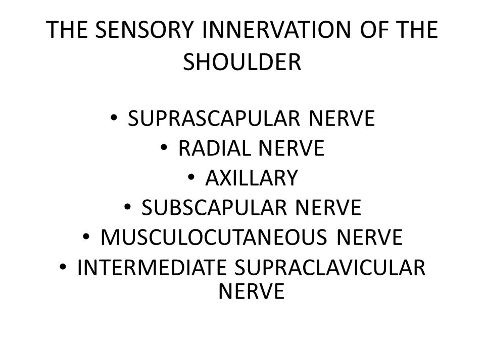 THE SENSORY INNERVATION OF THE SHOULDER