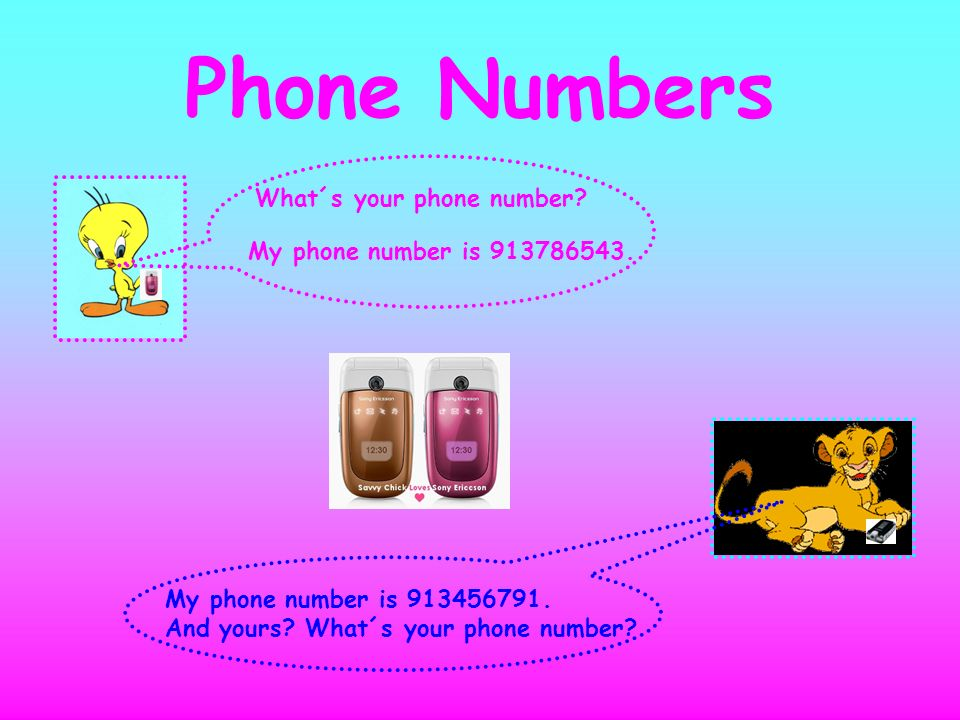 Phone Numbers What´s your phone number My phone number is 913786543.