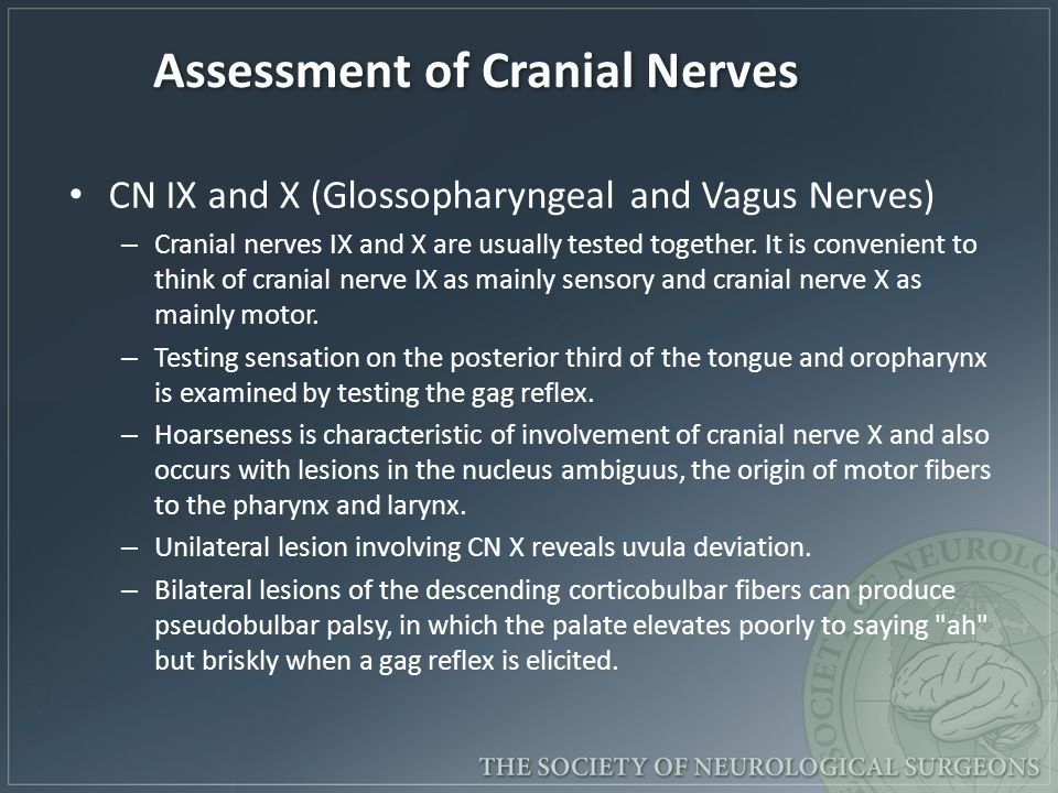 Assessment of Cranial Nerves