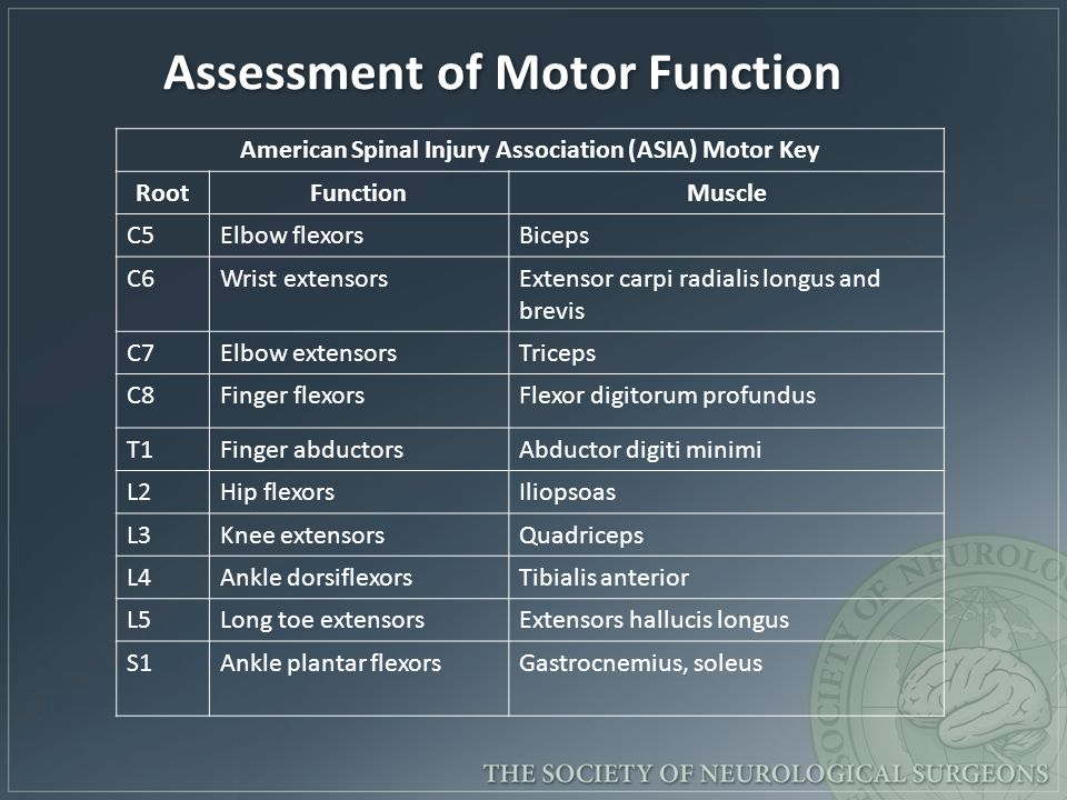 Assessment of Motor Function
