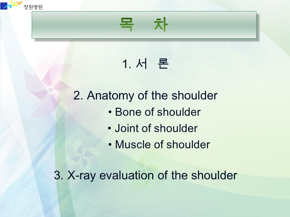 목 차 1. 서 론 2. Anatomy of the shoulder