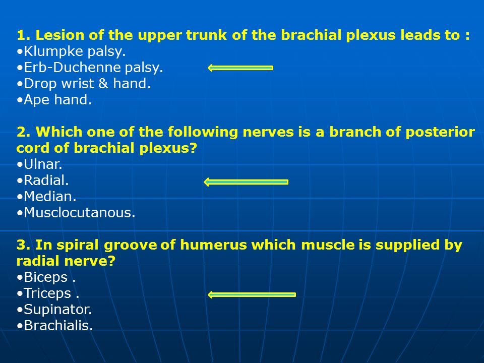 1. Lesion of the upper trunk of the brachial plexus leads to :