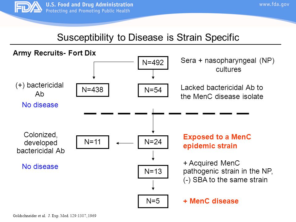 Susceptibility to Disease is Strain Specific