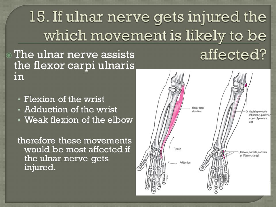 15. If ulnar nerve gets injured the which movement is likely to be affected