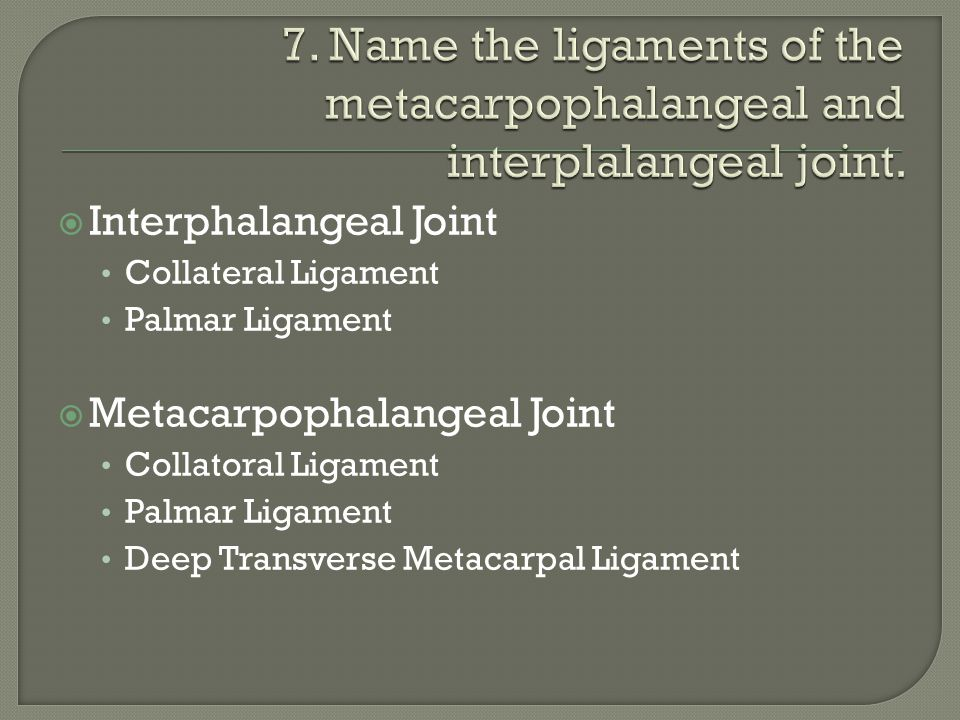 7. Name the ligaments of the metacarpophalangeal and interplalangeal joint.
