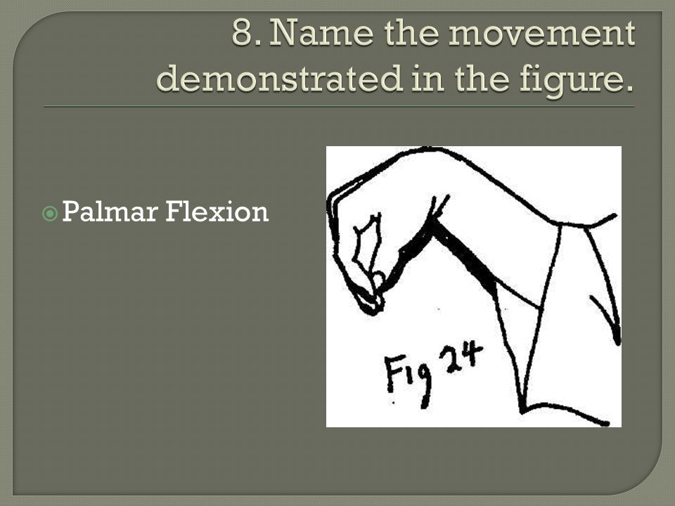 8. Name the movement demonstrated in the figure.