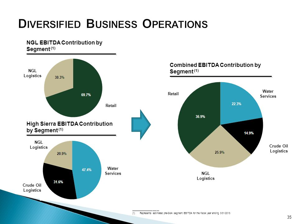 Diversified Business Operations
