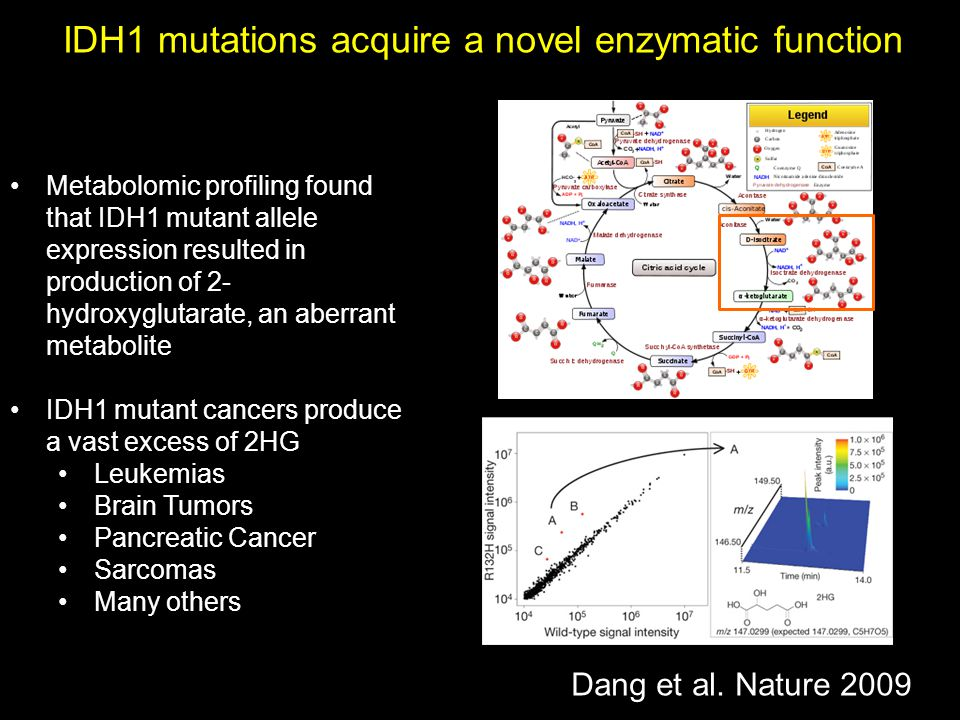 IDH1 mutations acquire a novel enzymatic function