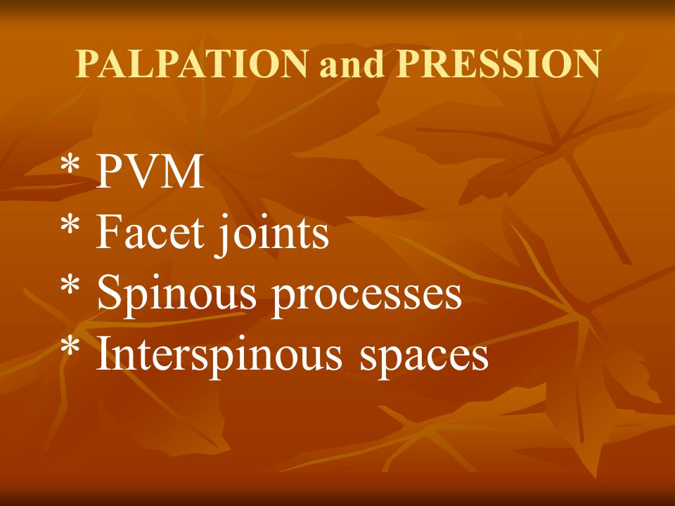 * PVM * Facet joints * Spinous processes * Interspinous spaces